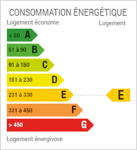 CONSOMMATION E - 236
